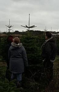 The Thomas Family Christmas Tree